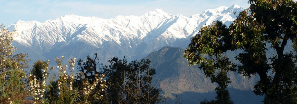 India Mountains 1000 350 crop